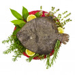 Flounder fish — Stock Photo