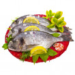Fresh fish bream — Stockfoto