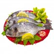 Fresh fish bream — Stock fotografie
