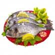 Fresh fish bream — Stock Photo