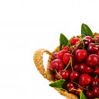 Fresh cherries in a beautiful large wicker basket — Stock Photo
