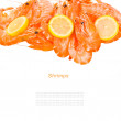 Shrimps — Stock fotografie