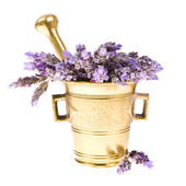 Plant lavender in a copper mortar — Stock Photo