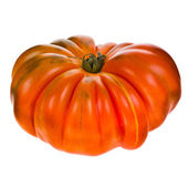 Big red tomato RAF close-up isolated on white background — Stock Photo