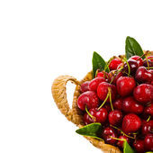 Fresh cherries in a beautiful large wicker basket — Stock Photo