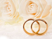 Dva snubní prsteny — Stock fotografie