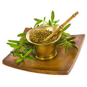 Spice Kitchen - oregano — Stock Photo