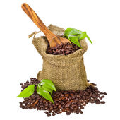 Canvas bag with coffee beans — Stock Photo