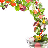 Flying fresh salad isolated over white background — Stock Photo