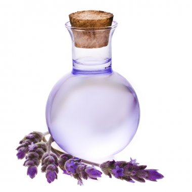 Lavender herb flower water in a glass bottle with flowers