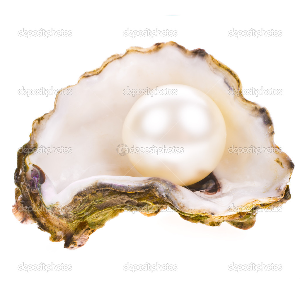 Big pearl in an oyster shell — Stock Photo © vanazi #27607201
