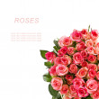 Bouquet of pink roses frame isolated over white background — Stock Photo