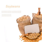 Soybeans, poured into bags of canvas, wooden spoons and a plate, sprinkled soybeans and cardboard table for labels isolated on white background — Stock Photo