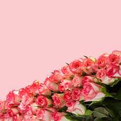 букет из розовых роз на розы фон — Стоковое фото