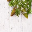 Theme New Year holidays and Christmas Green spruce branches with cones on a white background painted old wood planks as background — Foto Stock