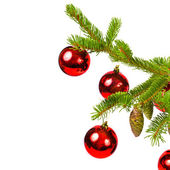 Branch of a Christmas tree and brilliant red balls and fir cones isolated on white background — Stock Photo