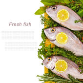 Fresh sea fish and surrounded by fresh herbs and vegetables lies on the yellow mat isolated on white background — Stock Photo