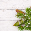 Theme New Year holidays and Christmas Green spruce branches with cones — Stock Photo #37789963