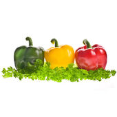 Sweet colorful paprika on parsley leaves — Stock Photo