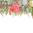 Merry Christmas edge of the branches of Christmas tree — Stock Photo #37790065