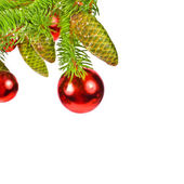 Branch of a Christmas tree and three brilliant red balls and fir cones — Stock Photo