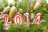 Branch of Christmas tree with numbers in 2014 sprinkled with snow — Stock Photo