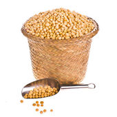 Soybeans with a metal spoon in a small wicker basket — Stock Photo