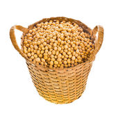 Soybeans in a small wicker basket — Stock Photo