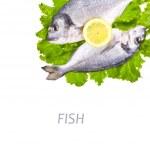 Dorado fish with lemon and greens — Stock Photo #40294291