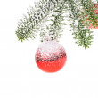 Branch of a Christmas tree — Stock Photo #40294401