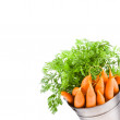 Fresh baby carrots in an iron beam — Stock Photo #40294531