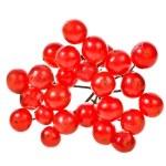 Red berries viburnum closeup — Stock Photo #40294711
