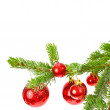 Branch of a Christmas tree — Stock Photo #40294823
