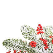 Christmas motifs and tree branches — Stock Photo