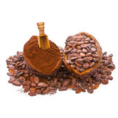 Cocoa beans into cocoa fruit and spilled beans — Stock Photo