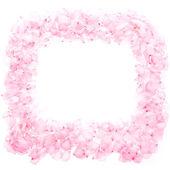 春のピンクの花弁、葉はありません。 — ストック写真