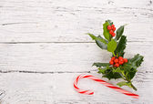 Christmas and New 2014 plant aquifolium — Stock Photo