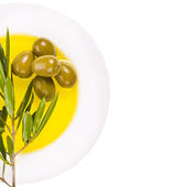 The branch of olive tree and olives — Stock Photo