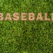 Green grass texture and word baseball — Stock Photo