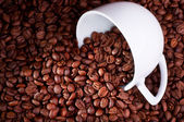 Roasted coffee beans background — Stock Photo