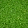 Stock Photo: Natural green grass