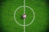 Natural green grass soccer field — Foto Stock