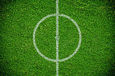 Natural green grass soccer field — Stock fotografie