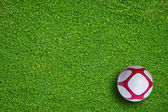 Natural green grass soccer field — Stockfoto