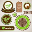 Set of organic, ecology vector labels — Stock Vector