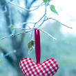 Heart shaped Christmas Ornament on Frozen Branch — Stock Photo