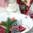 Stock Photo: Christmas Place Setting