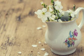 Spring blossom in vase — Stock Photo