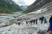 Trekking en el glaciar de la gente. hacer cadena con cuerdas. Noruega — Foto de Stock