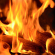 Burning corn cobs — Stock Photo